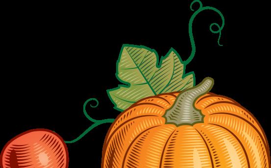Buy Local Pumpkin